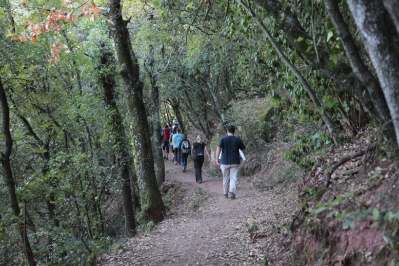 Caminada bosc amb gent